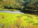 rijeka crnojevica2