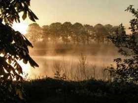pejzazi u magli
