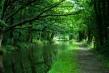 zelenilo rijeka
